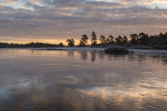 Icy Pond, New Forest